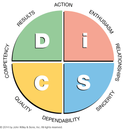 Disc profile assessment